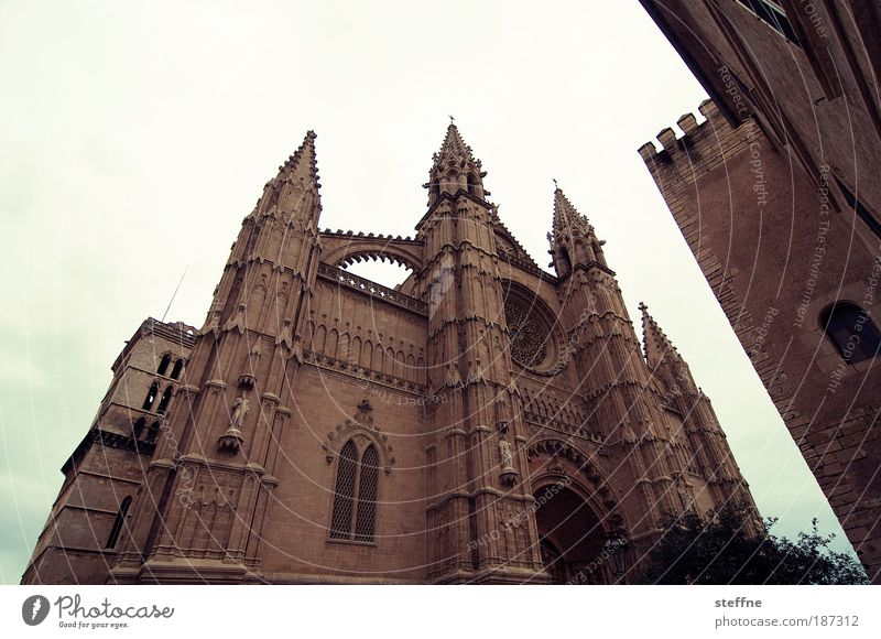 cathedral apex Palma de Majorca Spain Capital city Old town Church Dome Tourist Attraction Landmark Cathedral La Seu Religion and faith Colour photo