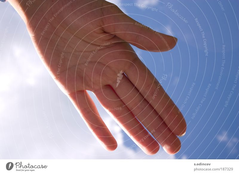 Hand in the sunlight Nature Air Sky Clouds Solar eclipse Summer Beautiful weather Catch To enjoy Authentic Simple Friendliness Happiness Clean Blue Pink Red