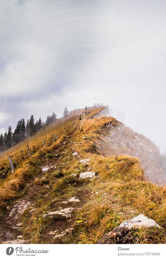 a long way Mountain Hiking Woman Adults Nature Landscape Clouds Sun Autumn Beautiful weather Fog Alps Peak Far-off places Gigantic Natural Loneliness Adventure