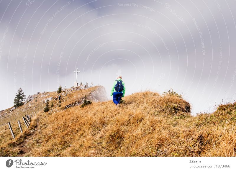 summiteer Mountain Hiking Sports Woman Adults Nature Landscape Sun Autumn Beautiful weather Fog Alps Peak Going Gigantic Natural Power Brave Serene Loneliness