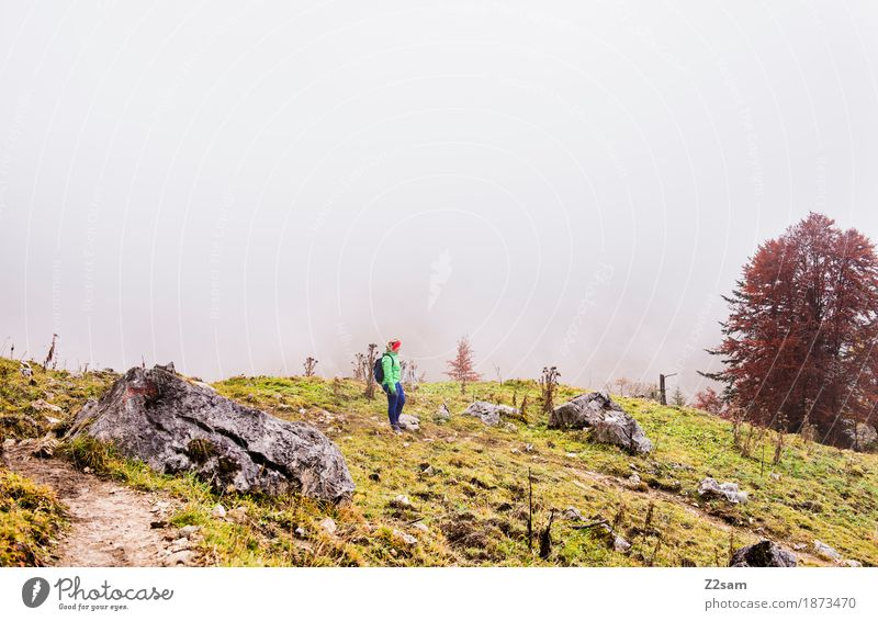 all alone up here Mountain Hiking Sports Woman Adults 30 - 45 years Nature Landscape Autumn Bad weather Fog Bushes Alps Peak Going Stand Fresh Cold Natural