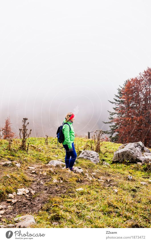 Nix los here Leisure and hobbies Mountain Hiking Woman Adults 18 - 30 years Youth (Young adults) Nature Landscape Clouds Autumn Bad weather Fog Tree Alps