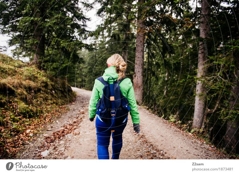 Downward with momentum Lifestyle Leisure and hobbies Mountain Hiking Sports Young woman Youth (Young adults) 18 - 30 years Adults Nature Landscape Autumn