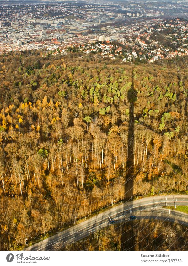 Green City Vacation & Travel House (Residential Structure) Street Forest Autumn Tourism Media Television Tower Monument Aerial photograph Silhouette
