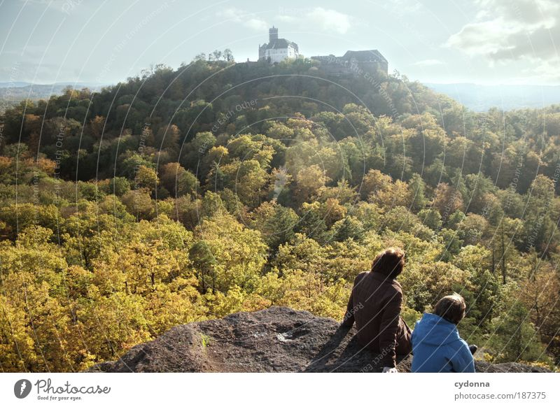 Nature Calm Forest Far-off places Relaxation Environment Thuringia Landscape Life Autumn Freedom Dream Time Rock Hiking Tourism