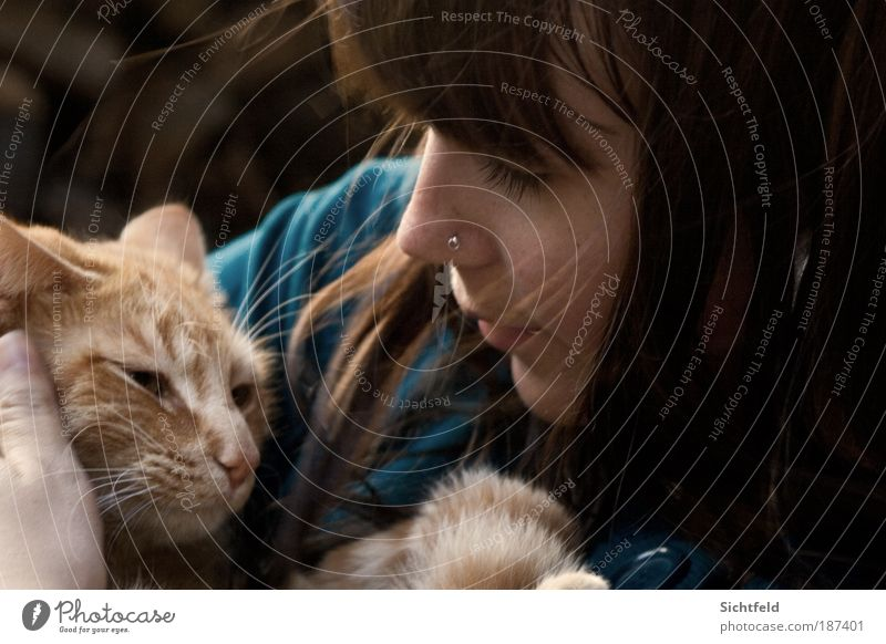 Cat Human being Woman Youth (Young adults) Young woman Animal 18 - 30 years Face Adults Life Feminine Autumn Hair and hairstyles Happy Friendship
