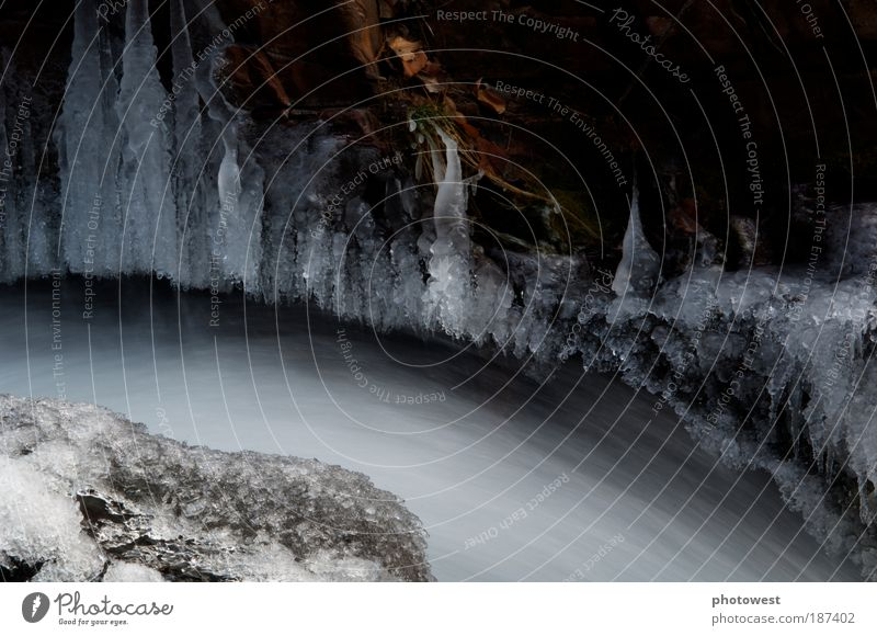 Flowing water below ice Nature Water White Snow Movement Ice Environment Frost Frozen Curve Elements Brook River bank