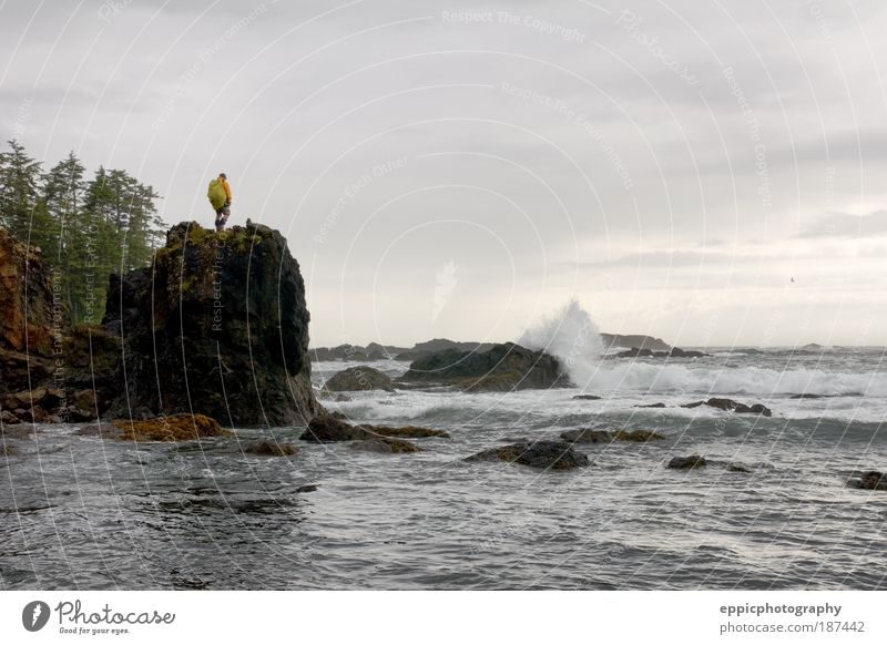 Hiker and rugged coastline Human being Nature Man Tree Ocean Joy Adults Coast Moody Waves Hiking Stand Bravery Pacific Ocean Stone block