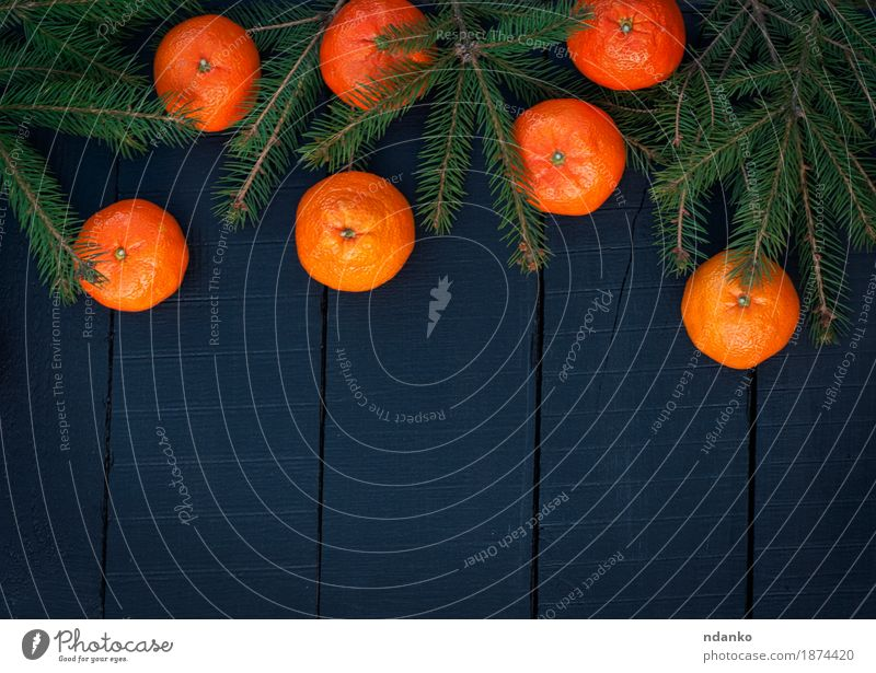 Orange tangerines with spruce branches on a black background Christmas & Advent Tree Black Yellow Wood Feasts & Celebrations Bright Fruit Decoration Retro New