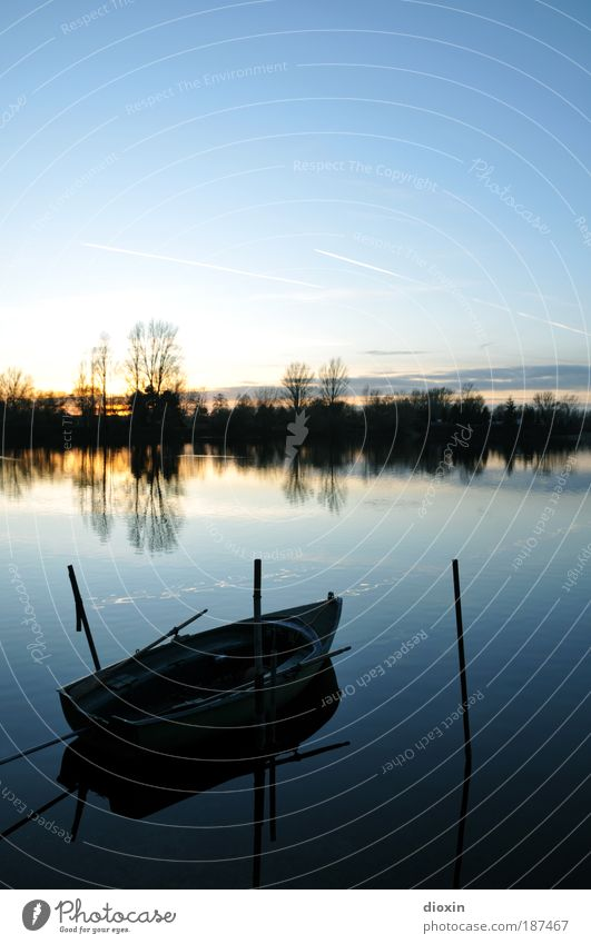 blue hour - 1. the lake Relaxation Calm Sun Nature Landscape Water Sky Clouds Sunrise Sunset Beautiful weather Tree Lakeside Rowboat Watercraft Blue Romance