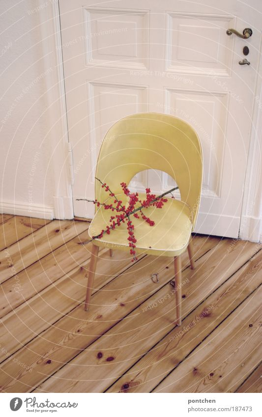 Nature Old Plant Red Yellow Style Wood Room Flat (apartment) Door Design Esthetic Retro Chair Authentic Branch
