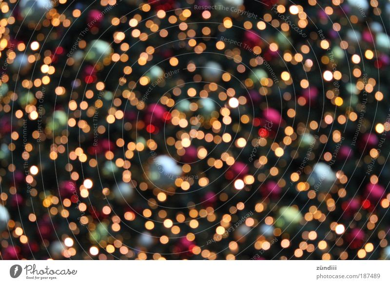 christmaslights Disco ball Gold Glittering Illuminate Multicoloured Red Silver Moody Happy Contentment Anticipation Belief Light Christmas & Advent shine