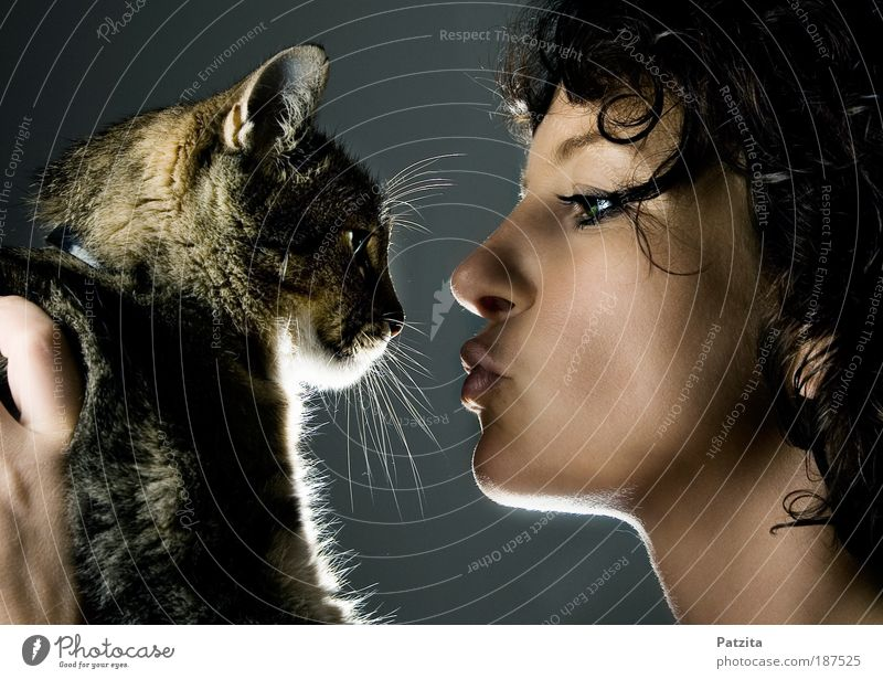 Human being Youth (Young adults) Beautiful Face Love Black Woman Animal Portrait photograph Feminine Happy Gray Cat Contentment Together Adults