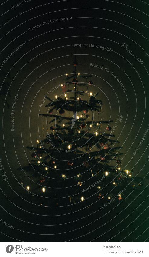 black is beauty Handicraft Flat (apartment) Decoration Feasts & Celebrations Winter Tree Kitsch Odds and ends Christmas tree Christmas decoration Fragrance