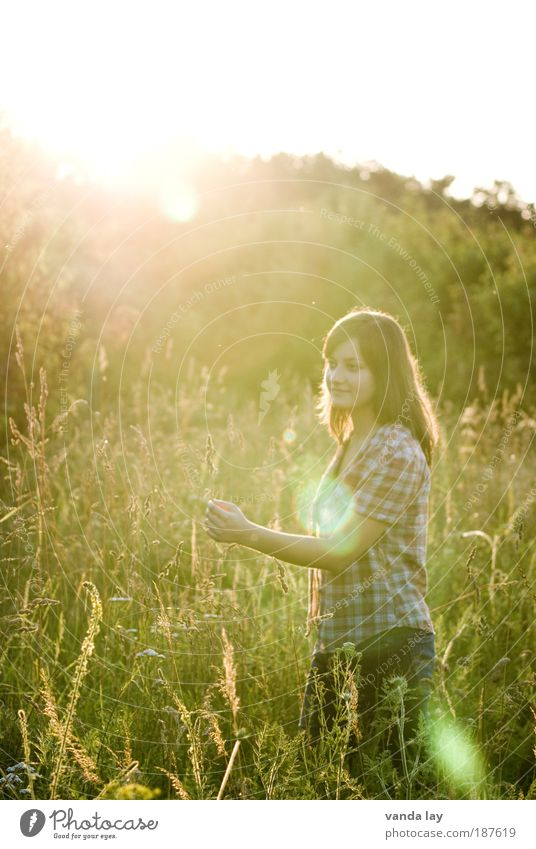 Lens Flare Human being Feminine Young woman Youth (Young adults) 1 18 - 30 years Adults Nature Plant Grass Bushes Clothing Shirt Brunette Long-haired Movement