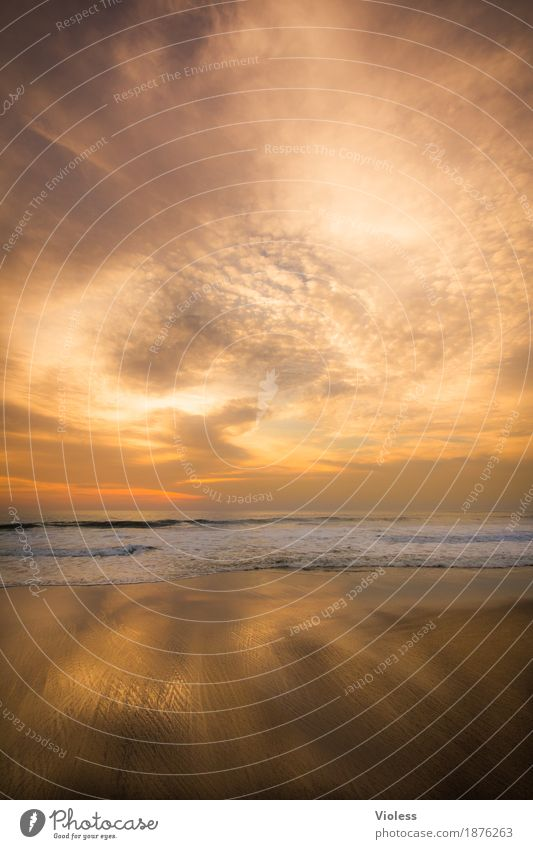 goldrush Nature Elements Earth Sand Air Water Sky Clouds Sun Sunrise Sunset Sunlight Summer Beautiful weather Waves Coast Beach Ocean Relaxation Illuminate