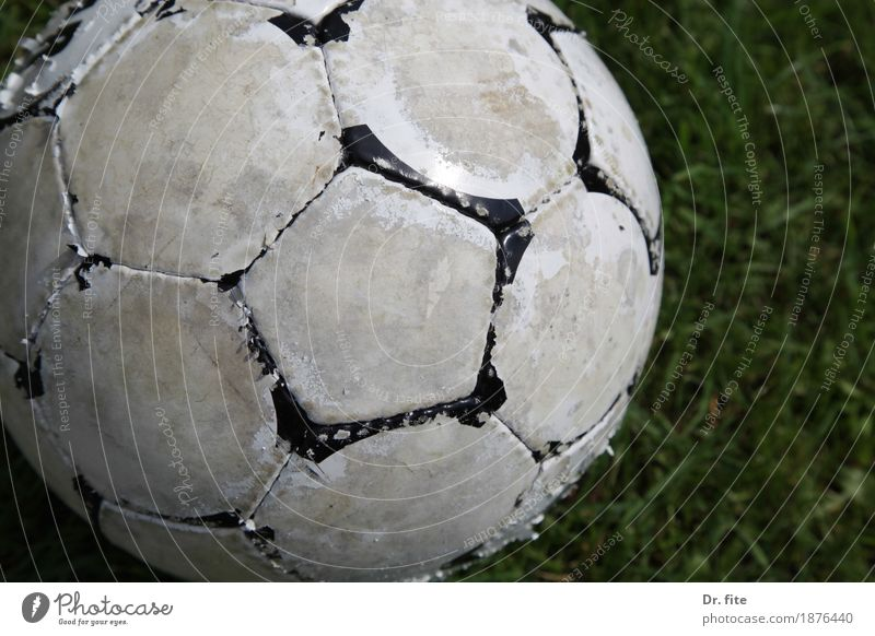 the ball is round Ball sports Soccer Grass Meadow Playing Sports Old Dirty Hideous Round Leisure and hobbies Transience White Worn out Second-hand Colour photo