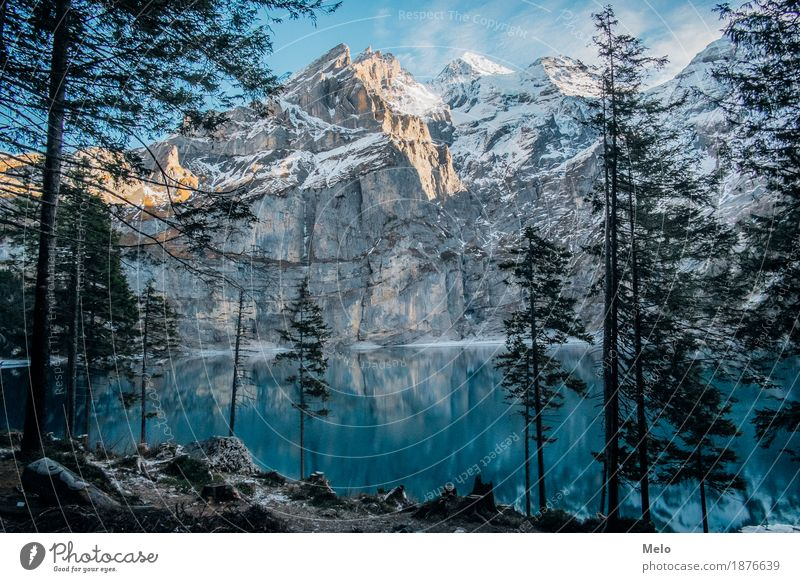 Lake Oeschinen Tourism Trip Freedom Expedition Winter Snow Winter vacation Mountain Hiking Climbing Mountaineering Nature Landscape Earth Air Water Sky Autumn