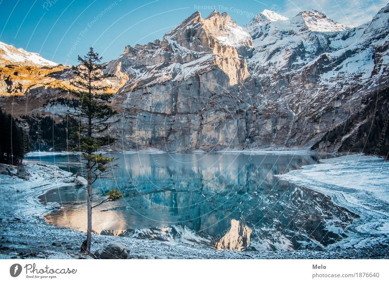 Lake Oeschinen II Nature Landscape Elements Water Autumn Winter Ice Frost Snow Hill Rock Alps Mountain Peak Snowcapped peak Glacier Lakeside mountain lake