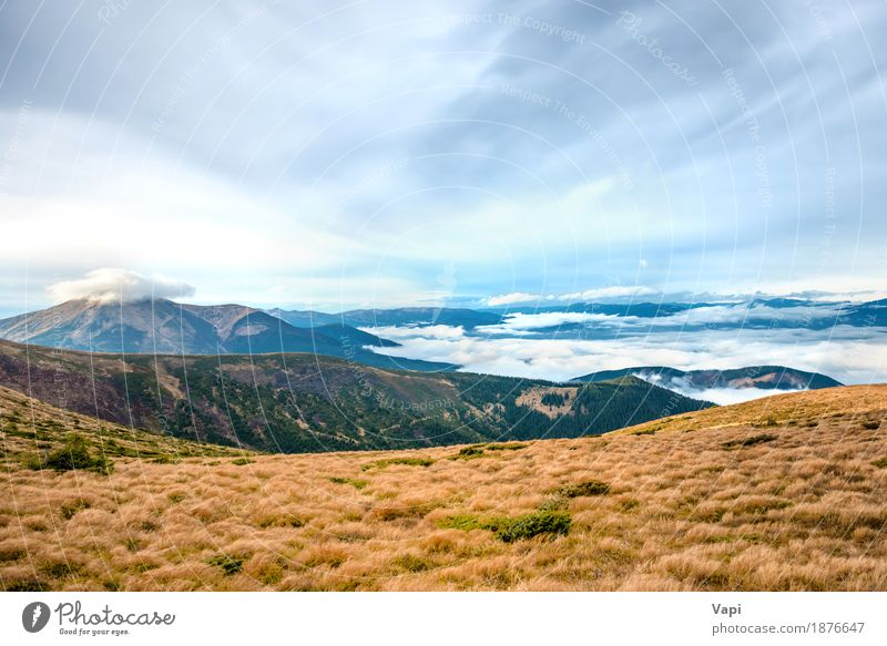 View from the mountain to beautiful landscape Vacation & Travel Tourism Summer Mountain Hiking Environment Nature Landscape Sky Clouds Horizon Autumn Fog Plant