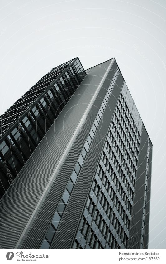 Elevator out of order! Work and employment Office work Workplace Company Town House (Residential Structure) High-rise Facade Window Tall Gloomy Gray Silver