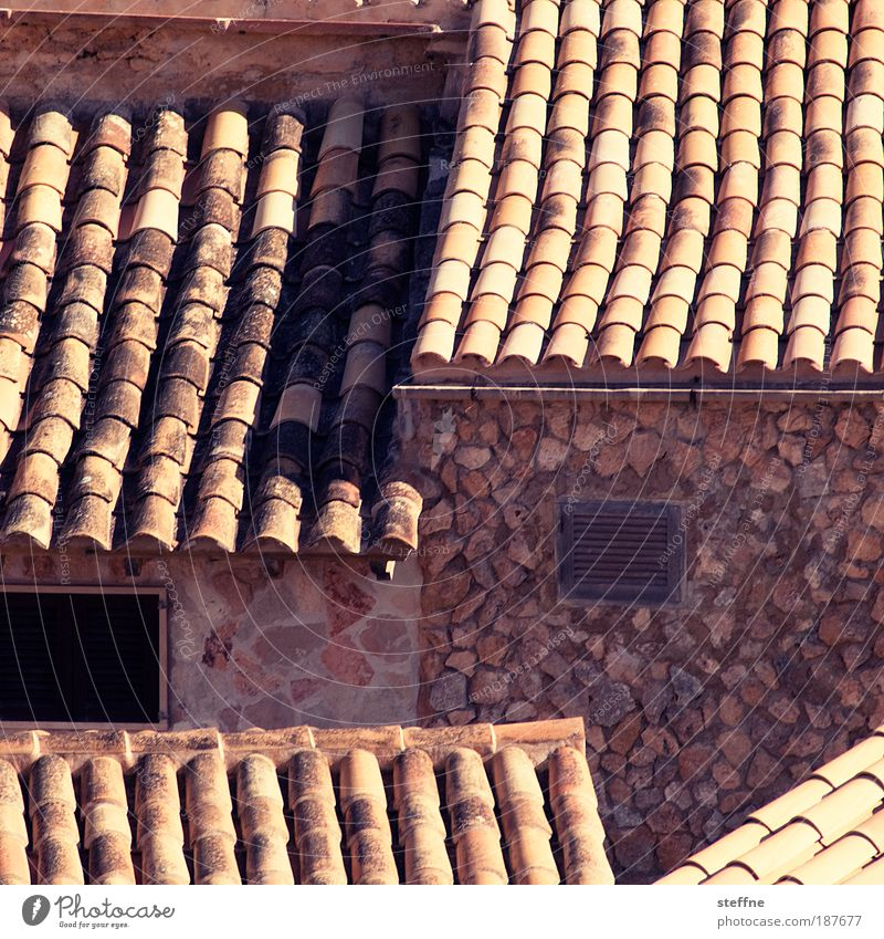 residential park Majorca House (Residential Structure) Detached house Facade Roof Stone Vacation & Travel Colour photo Exterior shot Pattern