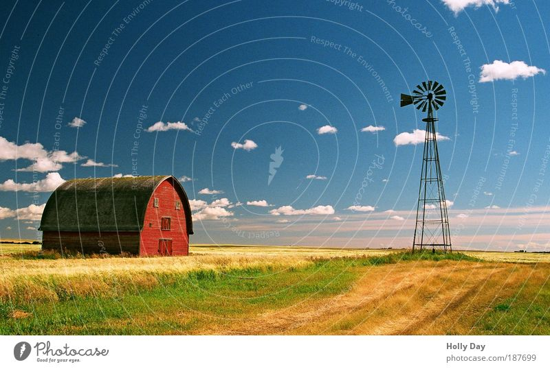 Old Sky House (Residential Structure) Blue Red Summer Clouds Yellow Grass Wood Lanes & trails Building Landscape Metal Field Nature