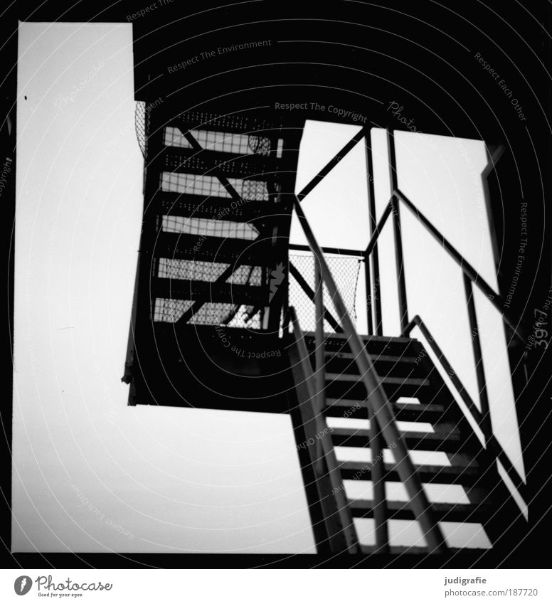 House (Residential Structure) Architecture Building Stairs Perspective Change Net Transience Manmade structures Decline Banister Effort Hannover Exhibition Black & white photo Expo 2000