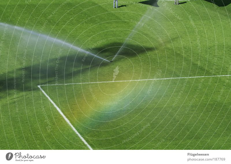 Sun Meadow Grass Sports Lifestyle Field Leisure and hobbies To enjoy Soccer Friendliness Lawn Sporting grounds Flag Passion Euphoria Audience