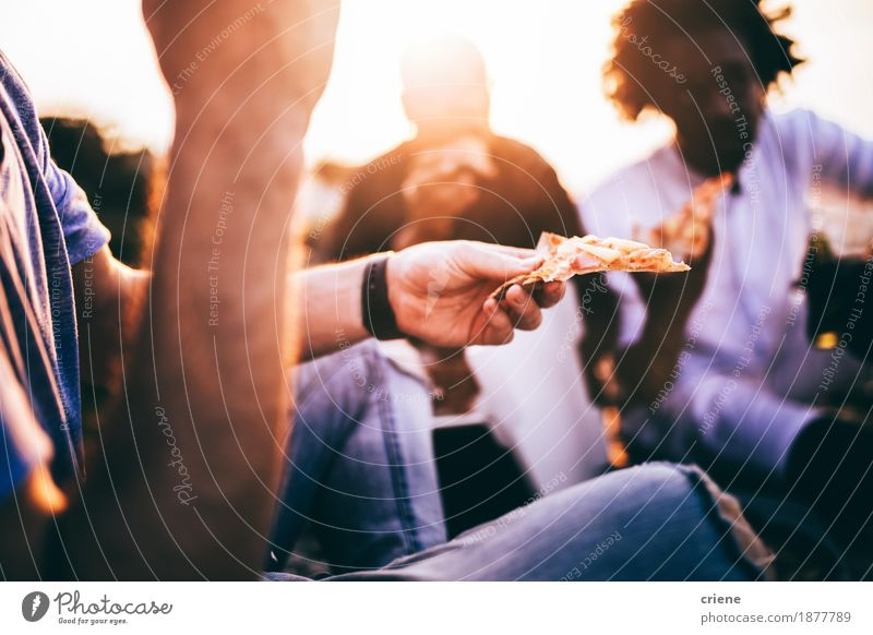 Friends eating pizza at picnic in sunset Human being Youth (Young adults) Summer Hand Eating Lifestyle Food Group Together Friendship Sit Happiness Adventure Dinner Meal Picnic