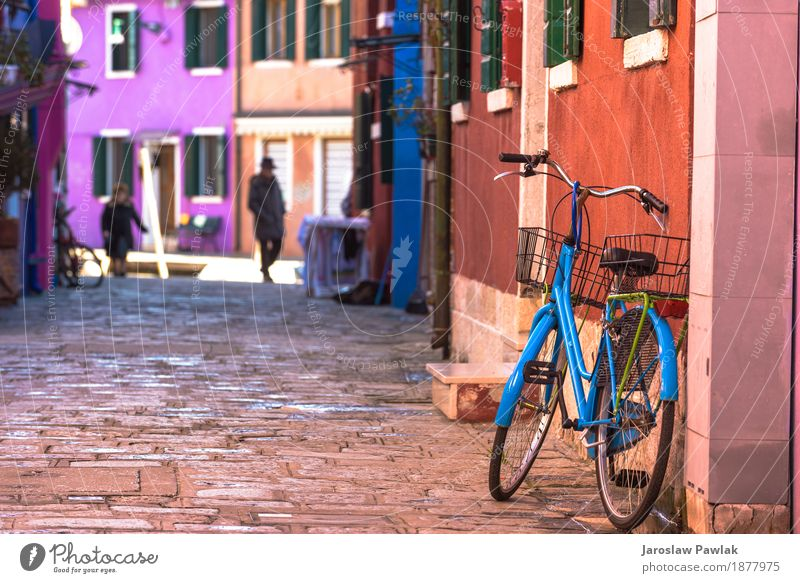 Destroyed bicycle leaning colored house in Burano, Italy. Vacation & Travel Old Summer Colour Beautiful Green Flower House (Residential Structure) Architecture