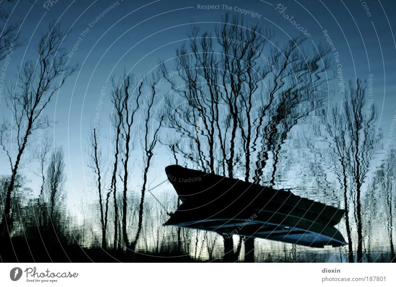 blue hour - 4. The dream Fishing (Angle) Water Plant Tree Lakeside Boating trip Cold Blue Dream Whimsical Surrealism Watercraft Rowboat Surface of water False