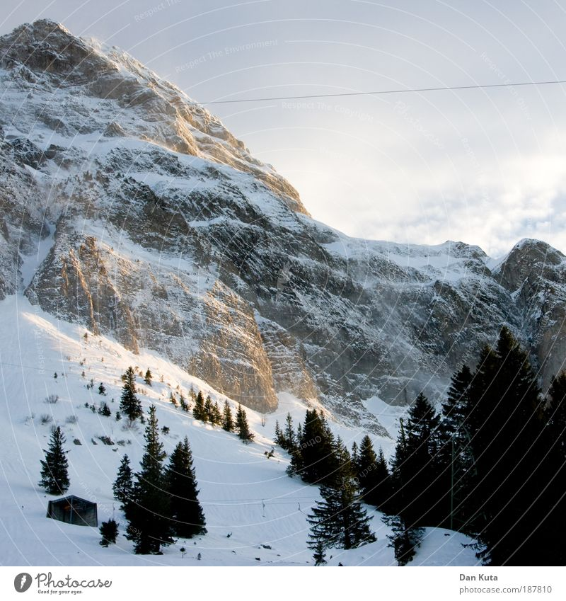 Nature Sky Winter Clouds Cold Snow Mountain Dream Ice Moody Fog Weather Switzerland Frost Fir tree Peak