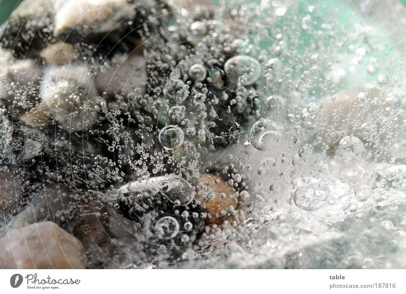 Nature Water Winter Cold Stone Air Ice Glittering Environment Time Frost Change Physics Pure Uniqueness Frozen