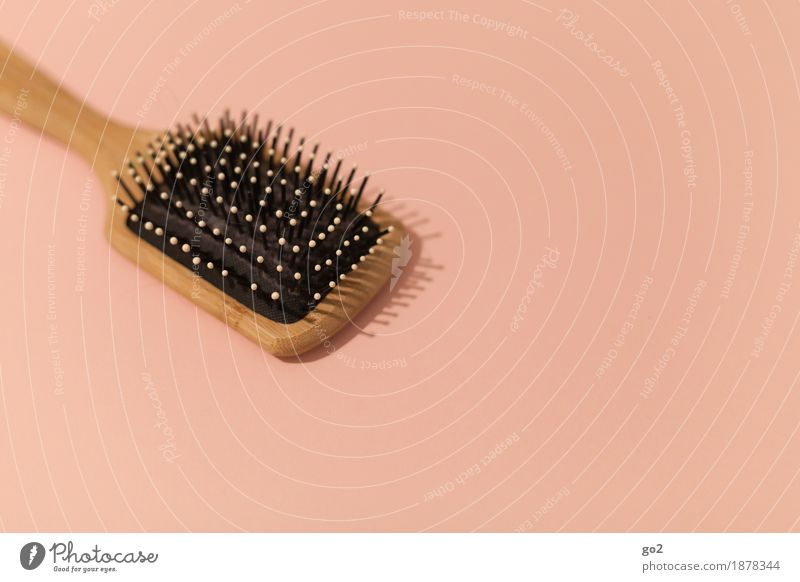 brush Beautiful Personal hygiene Hair and hairstyles Hairdresser Hairbrush Esthetic Simple Brown Colour photo Interior shot Studio shot Close-up Deserted