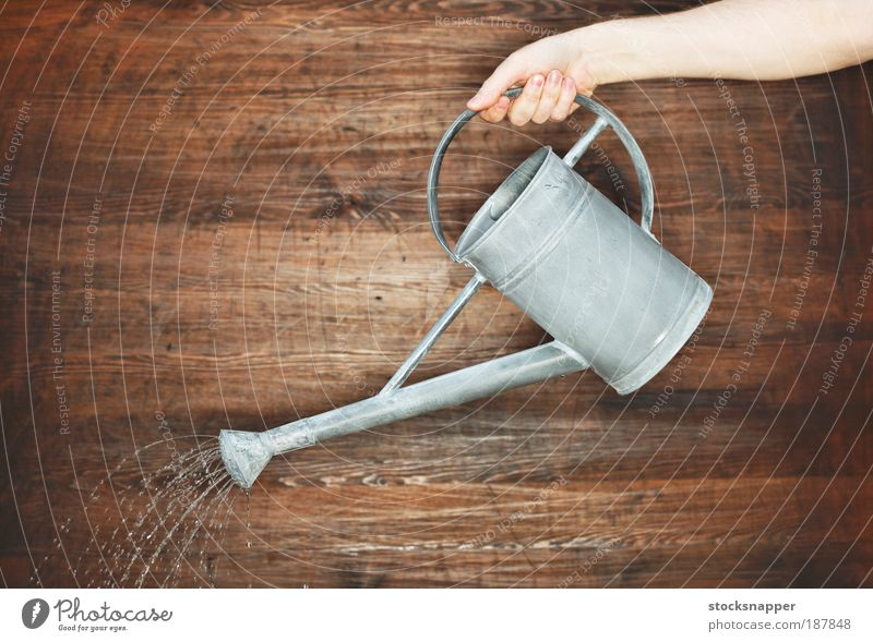 Watering Hand holding holds Watering can Tin Gray Pour pouring Sprinkle Gardening Unrecognizable Wall (building) Object photography