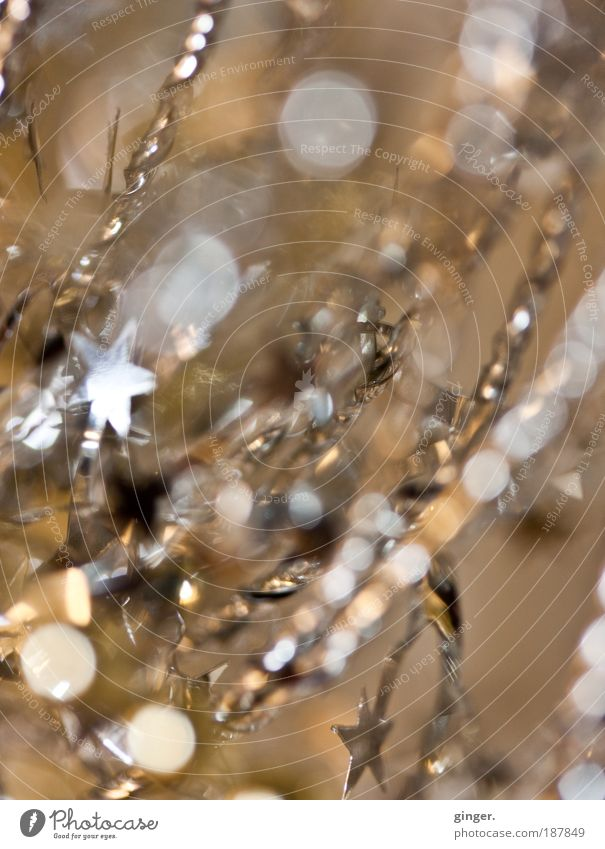 Stars and dots Kitsch Odds and ends String Gold Christmas decoration Embellish Decoration Silver Glittering Christmas & Advent Deserted Star (Symbol) Copy Space