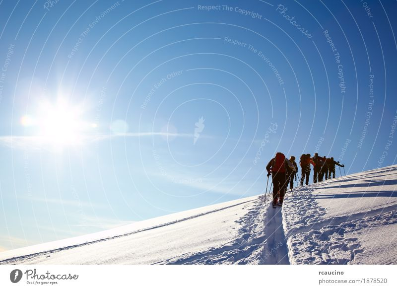 Group of backcountry skiers walk up to the top of a mountain Man White Landscape Winter Mountain Adults Snow Sports Hiking Europe Adventure Skiing