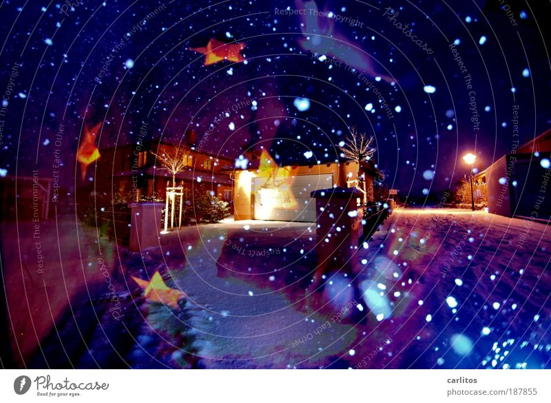 Christmas & Advent Blue Joy Night Cold Relaxation Exposure Nature Light Dream Colour Decoration Snowfall Warmth Contentment Moody