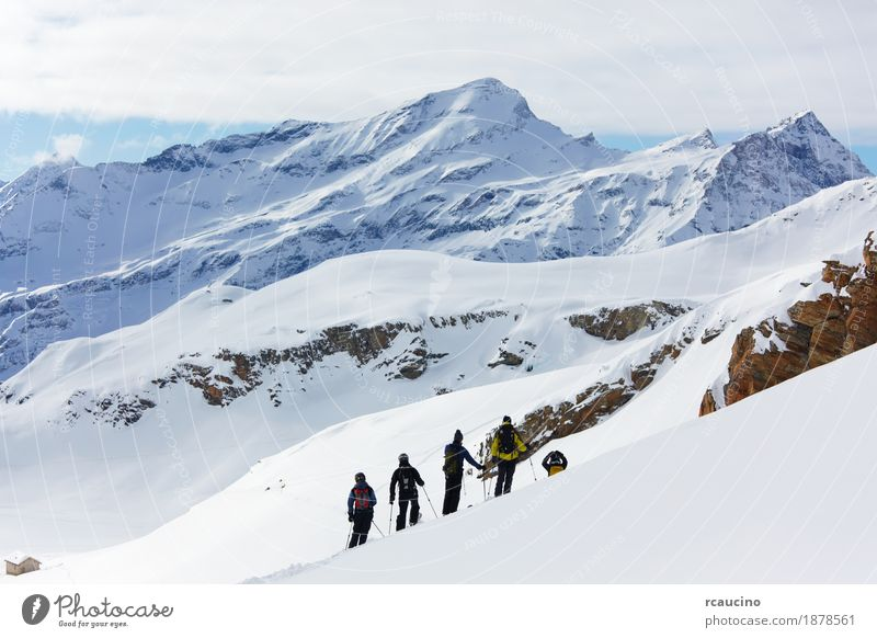 A group of freeriders over a snowy mountain landscape. Vacation & Travel Winter Snow Mountain Sports Skiing Boy (child) Man Adults Landscape Alps Freeze four
