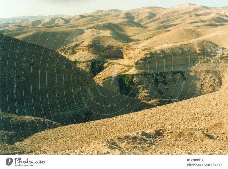 Desert landscape in Israel Sand Sun Warmth Dune Drought Furrow Valley Far-off places Erosion Deserted Exterior shot Colour photo