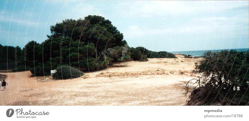 Beach in Mallorca Majorca Summer Ocean Spain Sun