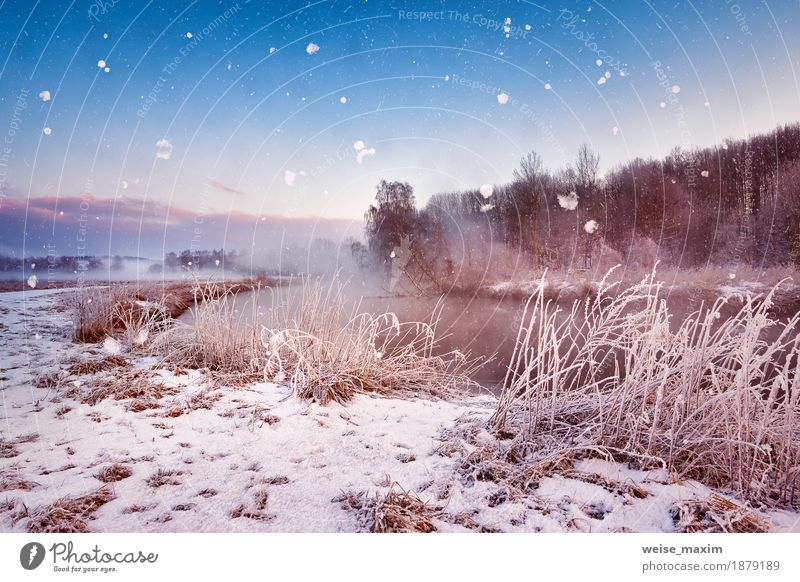 Winter misty dawn on the river. Snowflakes, snowfall Sky Nature Vacation & Travel Blue White Tree Landscape Winter Forest Meadow Natural Grass Snow Freedom Lake Tourism