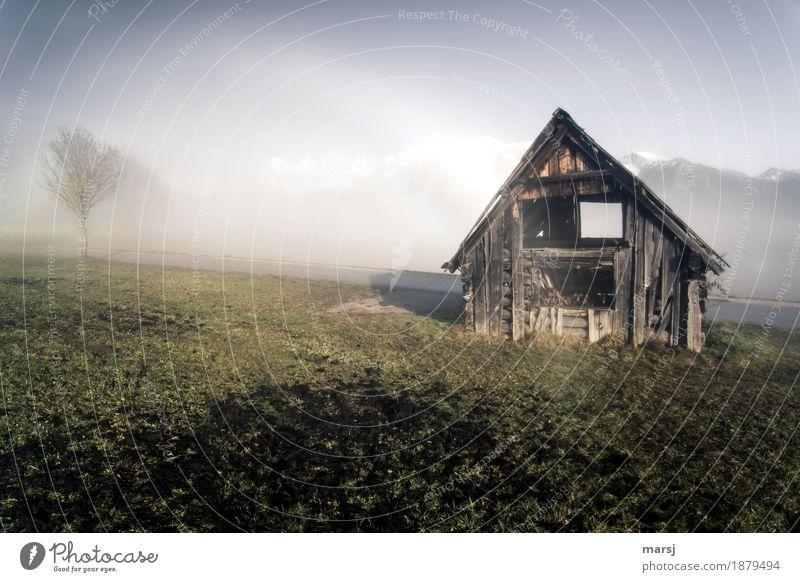 Nature Old Landscape Sadness Autumn Meadow Fog Beautiful weather Transience Hut Decline Hayrick