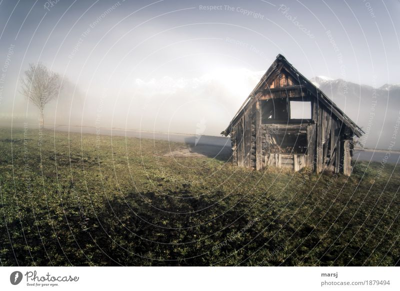 One of two Nature Landscape Autumn Beautiful weather Fog Meadow Alps Mountain Dachstein Peak Hut Old Sadness Decline Transience Hayrick hay barnyard Smooth