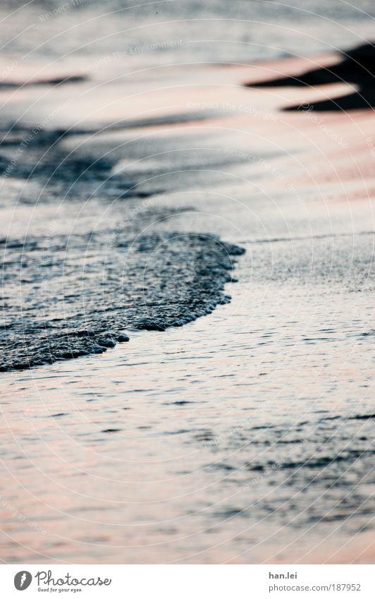 tides Summer vacation Beach Ocean Waves Sand Water Drops of water Beautiful weather Coast Lake Movement Dream Fluid High tide Low tide Tide Depth of field Flow