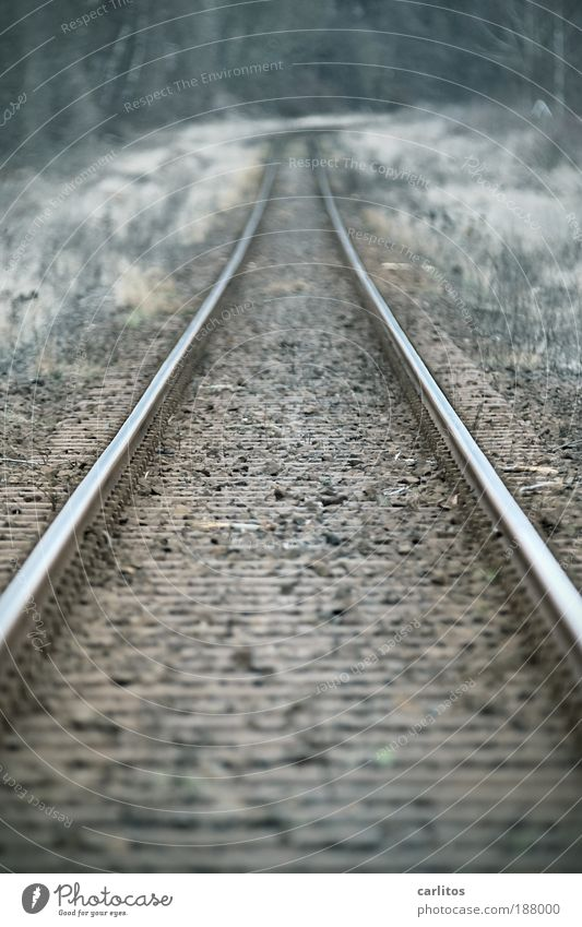 Old Cold Autumn Death Sadness Brown Glittering Hope Safety Logistics End Firm Long Railroad tracks Curiosity Mobility
