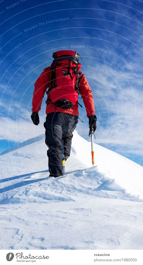 Mountaineer walks on the summit of a snowy peak Vacation & Travel Adventure Expedition Winter Snow Hiking Sports Climbing Mountaineering Success Human being Man