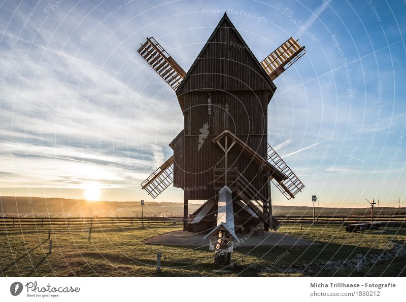 Windmill and sunny landscape Grain Agriculture Forestry Craft (trade) Technology Mill Environment Nature Landscape Sky Clouds Sun Sunrise Sunset Sunlight
