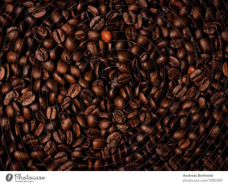 Many espresso beans Beverage Coffee Espresso Fragrance Delicious Brown cup Background picture Café Aromatic breakfast caffeine table fresh hot morning grain